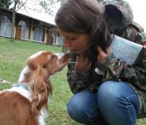 Z psem na wakacje - kolonia i obóz dla dzieci i młodzieży z własnymi psami, II stopnia (zaawansowani), Ryn